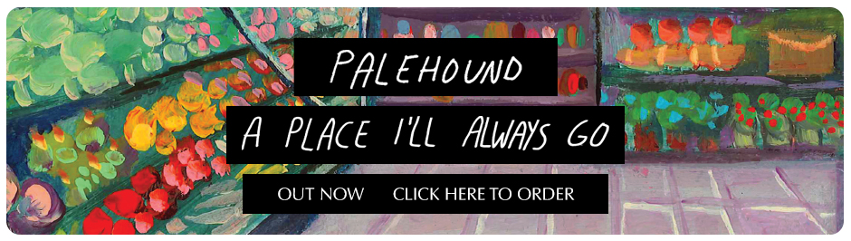 Palehound-estore-rounded-outnow.jpg