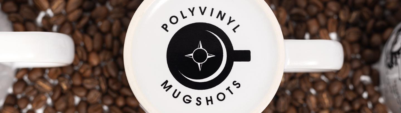 9ce7fca9297b3a Polyvinyl Records - Artists