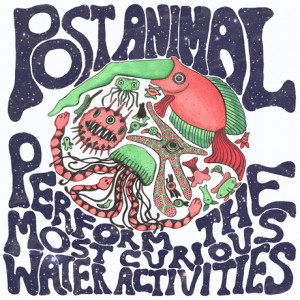 Post Animal Perform the Most Curious Water Activities