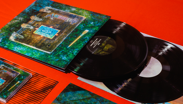​Anamanaguchi's [USA] is now shipping + brand-new vinyl variant