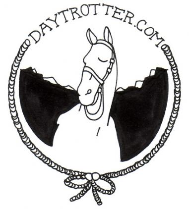Daytrotter Posts of Montreal Acoustic Performance